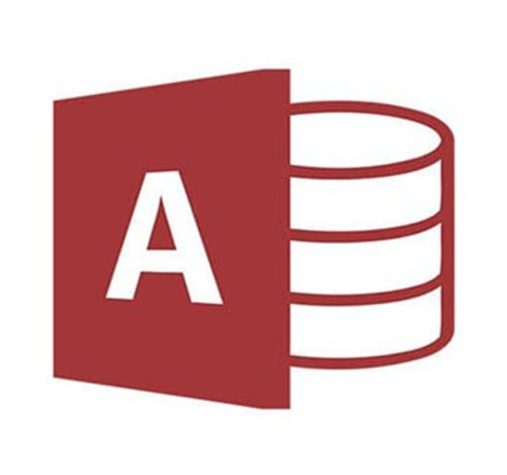 Microsoft Access Supports Large Number Data Type