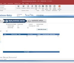 Best Microsoft Access database developer in Houston, TX is MS Access Solutions
